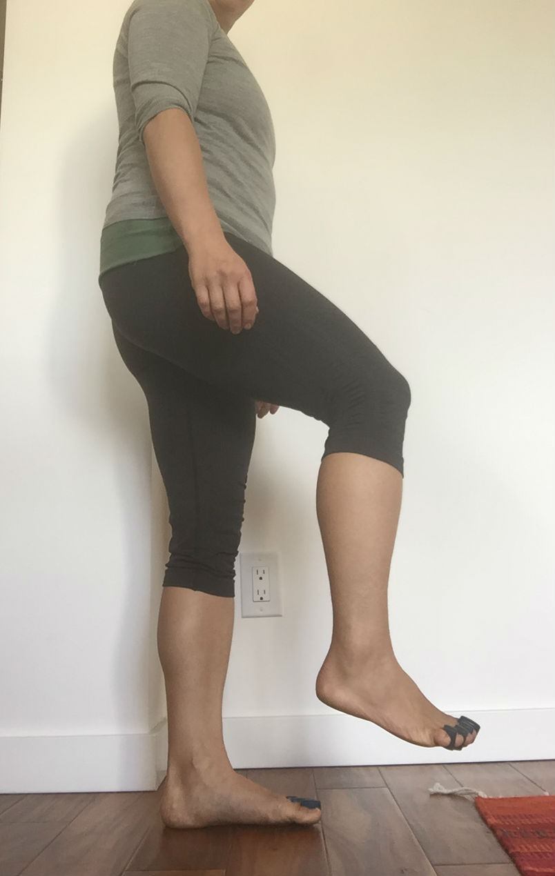 Hip and Knee Flexion